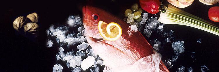 omega-3-comida