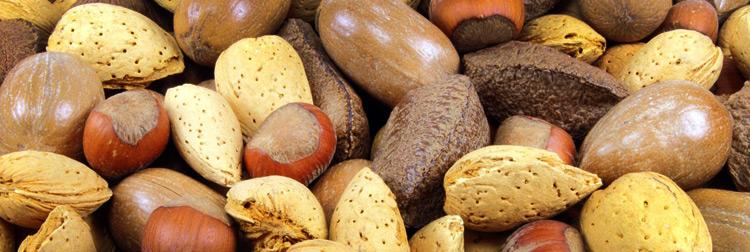 vitamina-e-frutos-secos