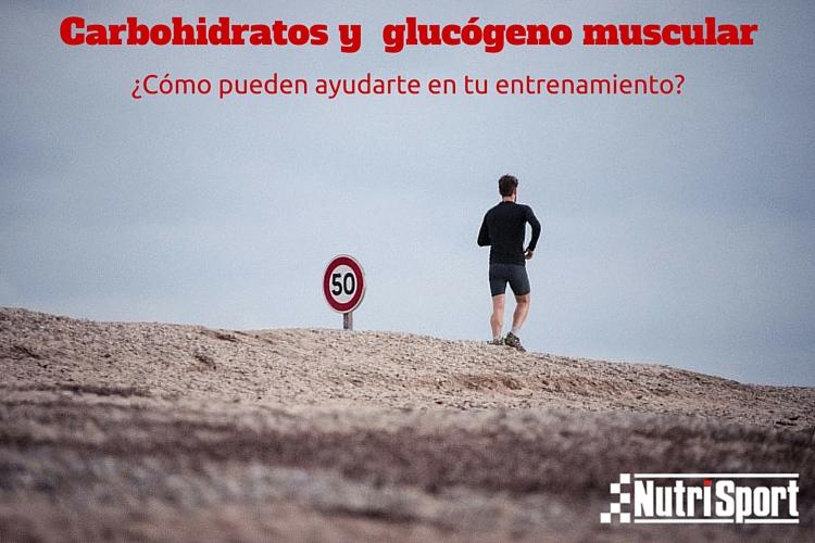 carbohidratos-glucogeno-muscular