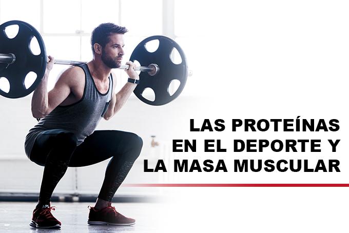 Las proteínas en el deporte y la masa muscular