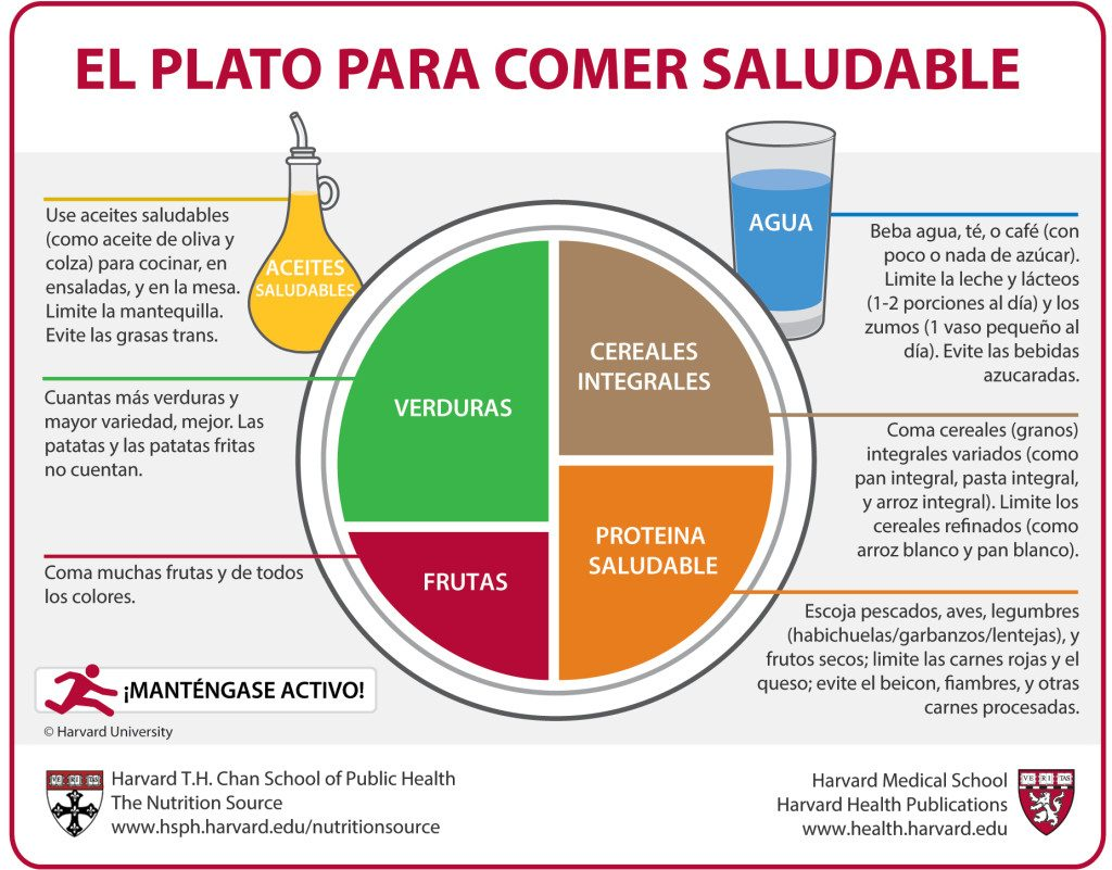Plato Harvard: Comida saludable